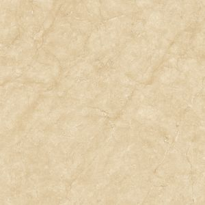 Royal Galala 皇家西米 | 800(L) x 800(W) x 11(Thk) mm