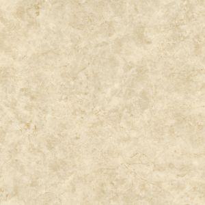 Oceanus Beige 海神米黃 | 800(L) x 800(W) x 11(Thk) mm