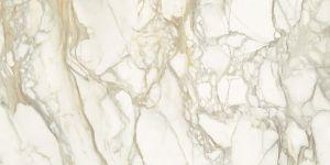 Calacatta Oro 魚肚金 | 3000(L)x1500(W)x6(Thk)mm
