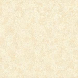 Elegant Tulips 優品鬱金香 | 中米黃 | 800(L)x800(W)x10(Thk)mm