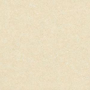 Elegant Tulips 優品鬱金香 | 深米黃 | 800(L)x800(W)x10(Thk)mm